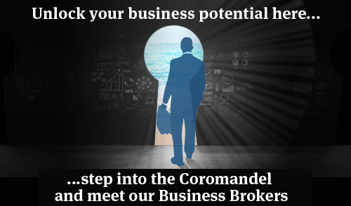 Business Brokers web page banner