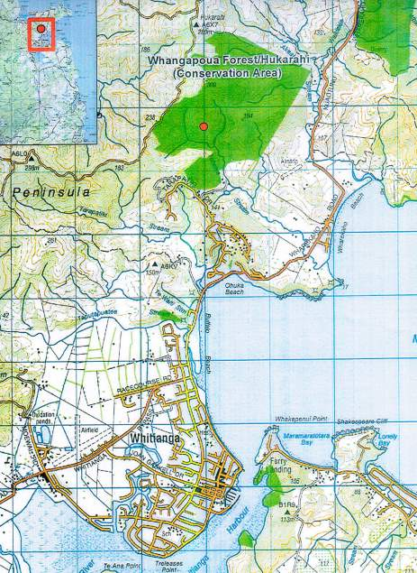 Map of Whangapoua Forest where kauri dieback found