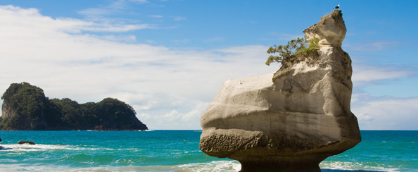 Just north of Hahei is the world famous Cathedral Cove and Marine Reserve Te Whanganui-A-Hei