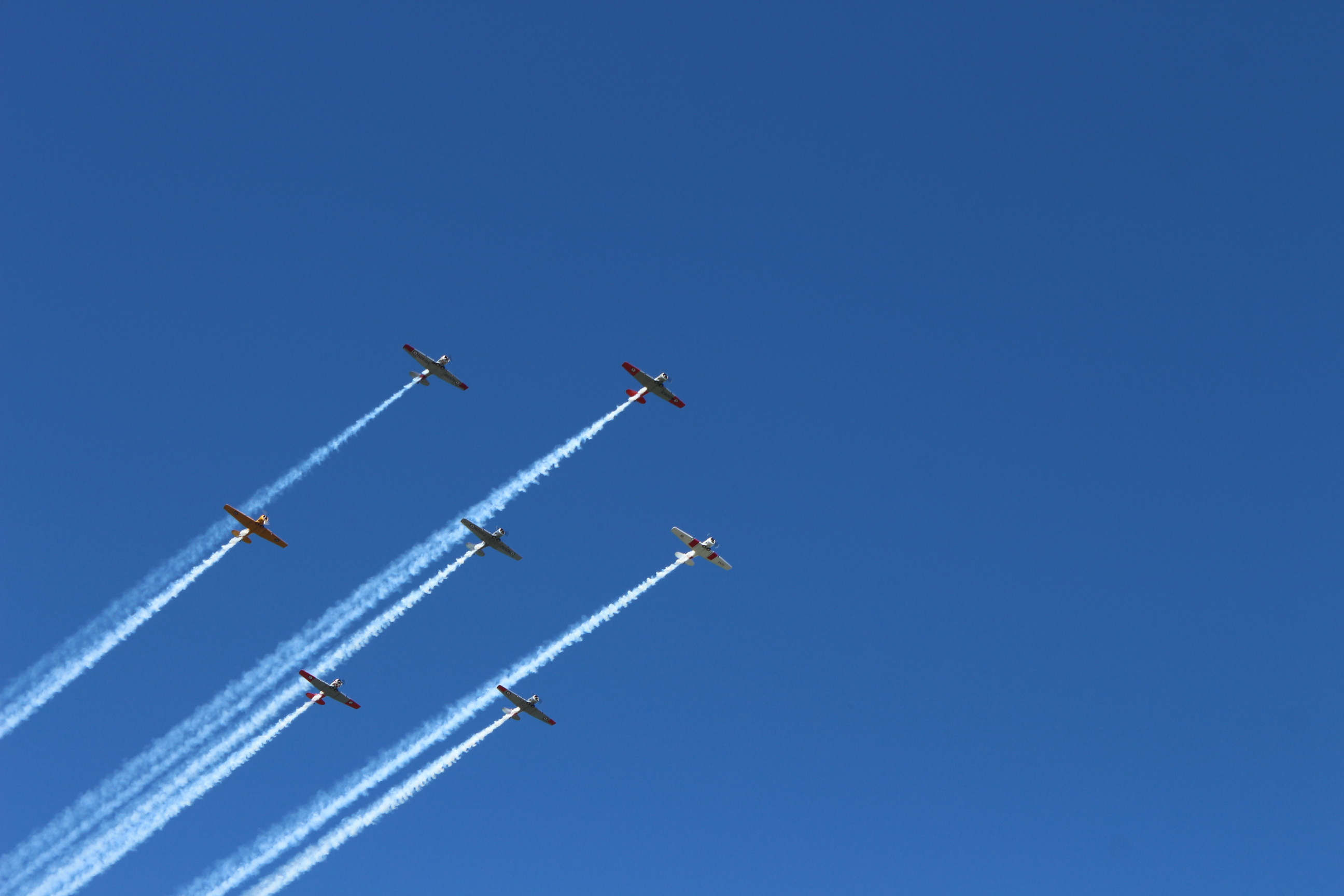 Several waves of vintage military aircraft from the NZ Warbirds Association overflew the unveiling ceremony